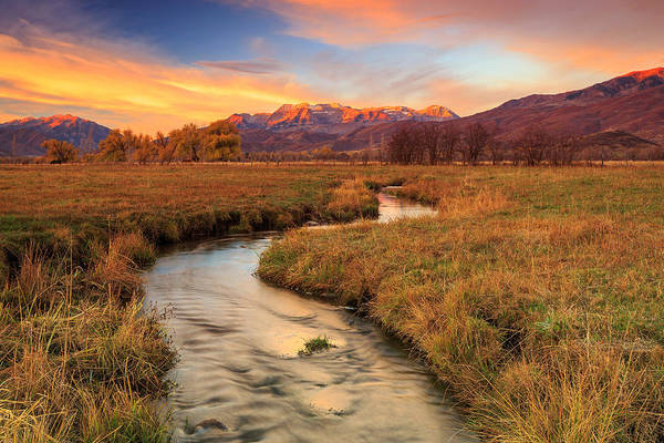 Autumn Morning In Heber Valley. Art Print