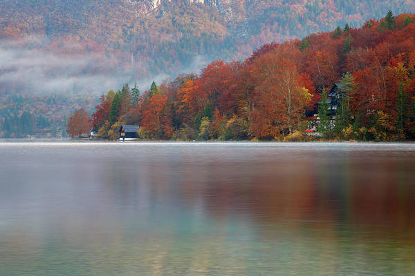 Wall Art - Photograph - Autumn Morning Over Lake Bohinj by Ian Middleton