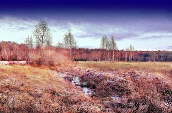 Wall Art - Photograph - Autumn Morning First Frost by Slawek Aniol