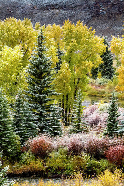Photograph - Autumn Mountain Snow by Teri Virbickis