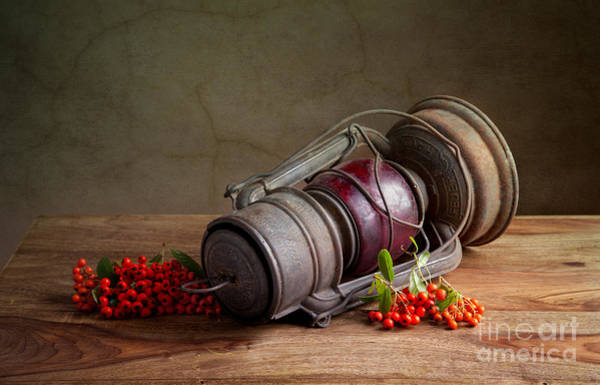 Red Berry Photograph - Autumn by Nailia Schwarz