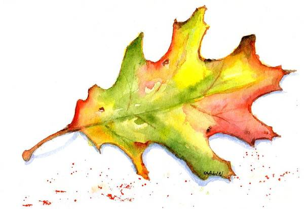Painting - Autumn Oak Leaf Watercolor by Carlin Blahnik CarlinArtWatercolor
