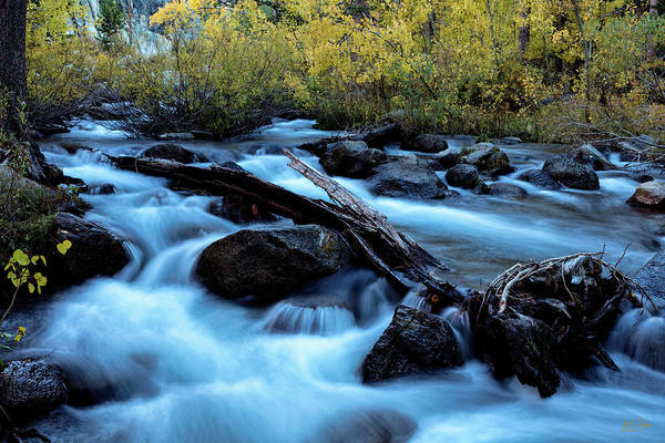 Photograph - Autumn On Bishop Creek by Stuart Gordon