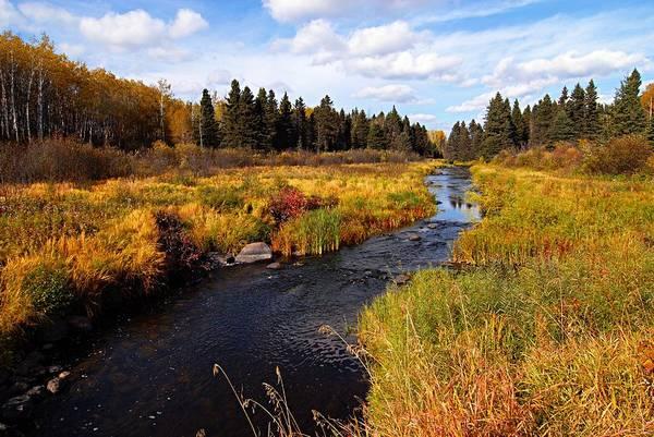 Autumn On Jackfish Creek Art Print