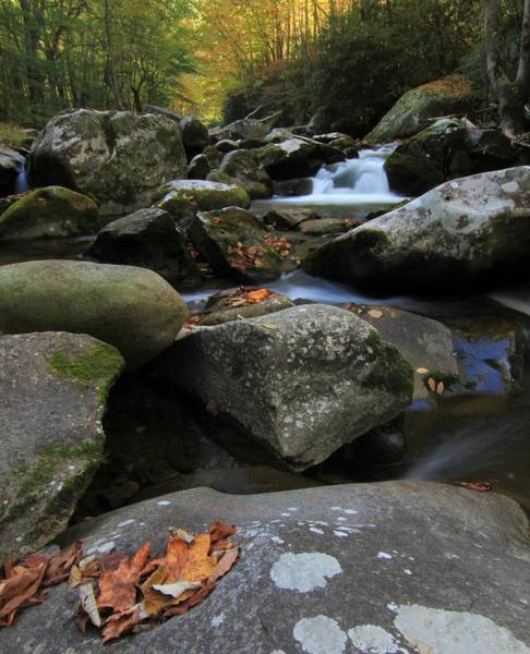 Photograph - Autumn On Little River In The Smoky Mountains by Dan Sproul