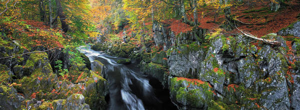 Wall Art - Photograph - Autumn On River Esk by Dave Bowman