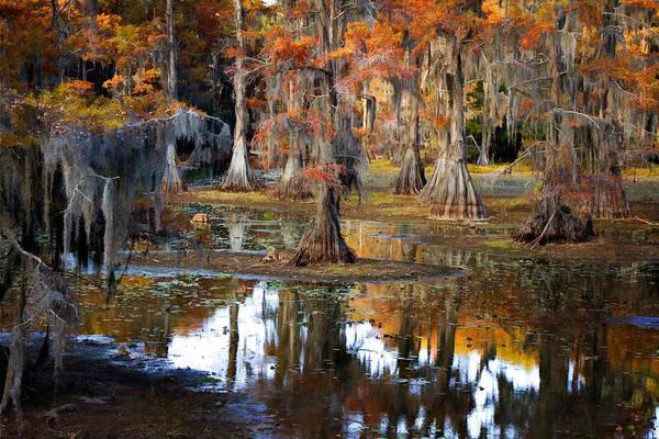 Cypress Digital Art - Autumn On Sawmill by Lana Trussell