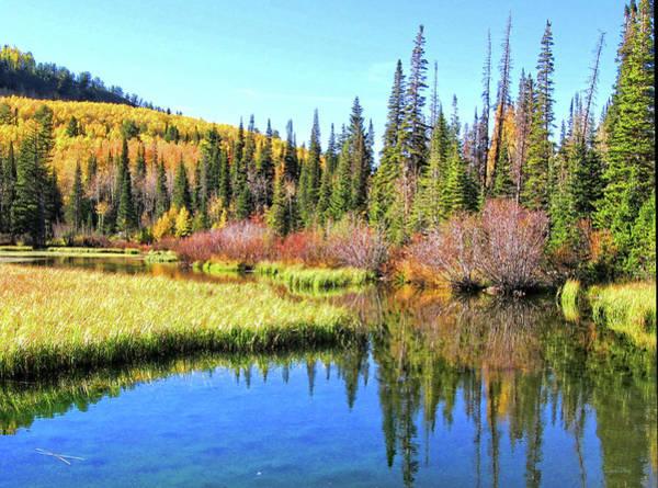 Photograph - Autumn On Silver Lake Photo by David King