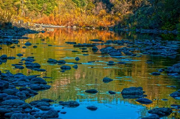 Photograph - Autumn On The American River by Sherri Meyer