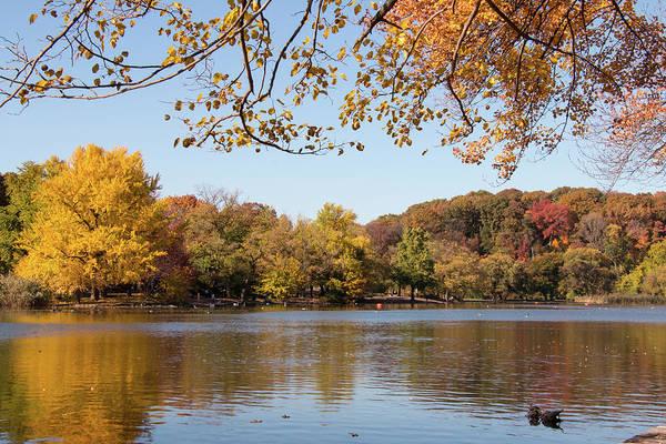 Wall Art - Photograph - Autumn On The Lake by Ellie Waligurski