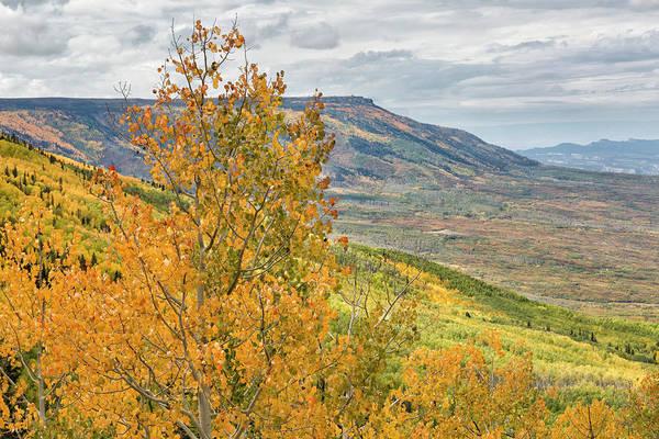 Photograph - Autumn On The Mesa by Denise Bush