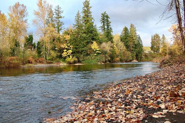 Photograph - Autumn On The Molalla by Brian Eberly