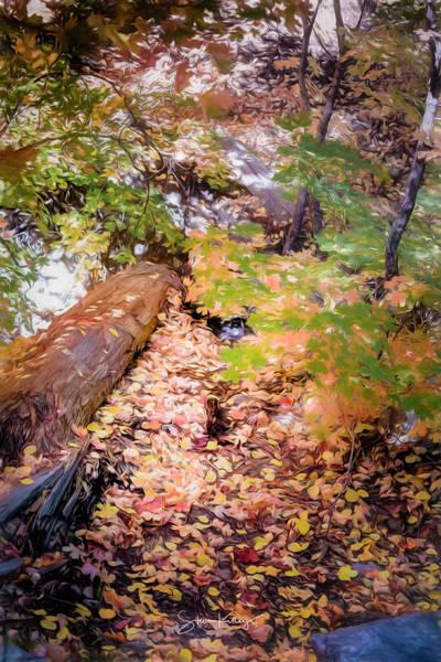 Digital Art - Autumn On The Mountain by Steve Kelley