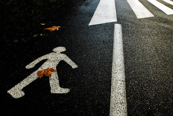 Humour Wall Art - Photograph - Autumn On The Road by Kikroune (christian R.)