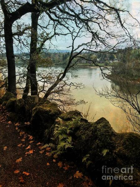 Photograph - Autumn On The Willamette River by Charlene Mitchell