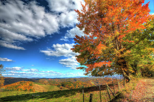 Photograph - Autumn On The Windfall by Dale R Carlson