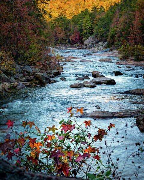 Autumn On Wilson Creek Art Print
