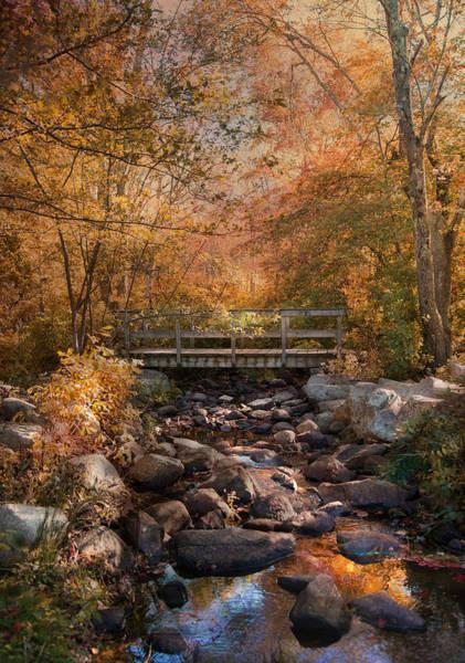 Photograph - Autumn Over The Bridge by Robin-Lee Vieira