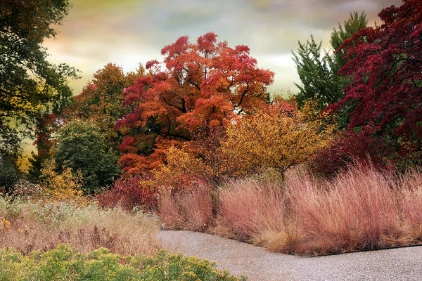 Country Garden Photograph - Autumn Path by Jessica Jenney