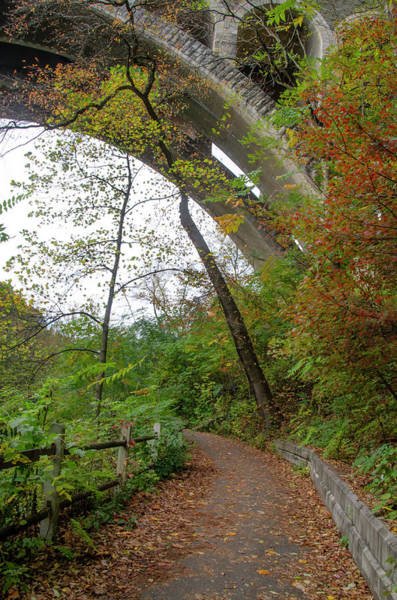 Photograph - Autumn Path Under The Henry Avenue Bridge by Bill Cannon