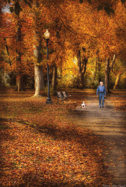 Dog Walker Photograph - Autumn - People - A Walk In The Park by Mike Savad