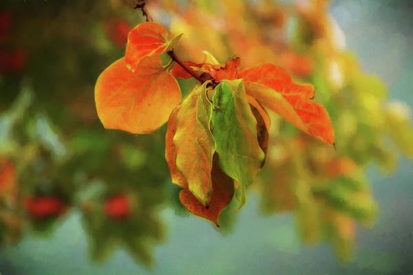 Wall Art - Digital Art - Autumn Persimmon Leaves by Terry Davis