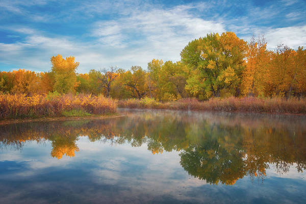 Photograph - Autumn Pond by Darren White