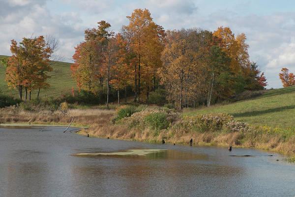 Photograph - Autumn Pond by Joshua House