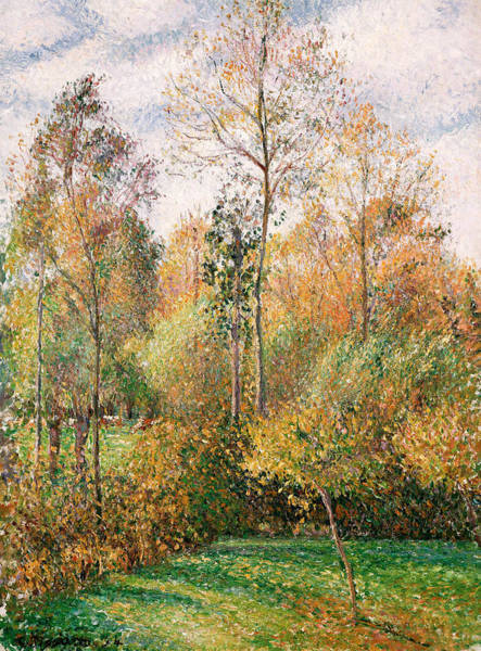 Post-impressionist Painting - Autumn Poplars, Eragny by Camille Pissarro