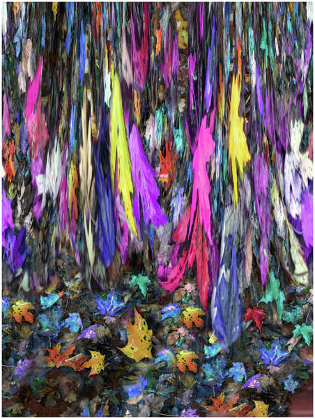 Photograph - Autumn Rain Shower Original by Wayne King