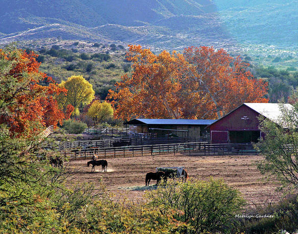 Autumn Ranch Art Print