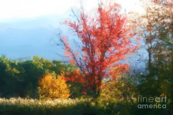 Autumn Red And Yellow Art Print