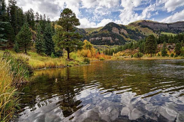 Photograph - Autumn Reflected by Leda Robertson