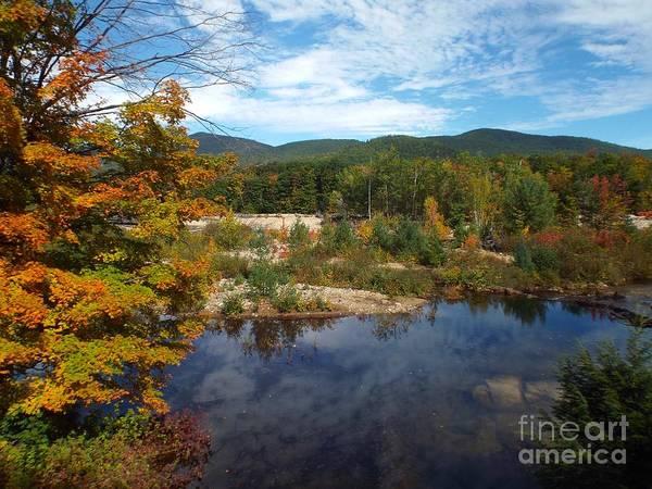 Photograph - Autumn Reflection by Barbara Von Pagel