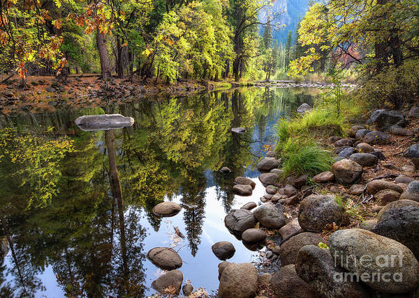 Photograph - Autumn Reflections 2 by Anthony Michael Bonafede