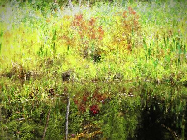 Digital Art - Autumn Reflections Art by Rusty R Smith