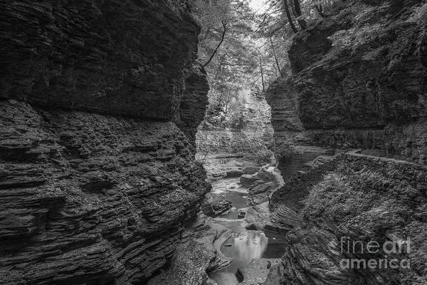 Watkins Glen Photograph - Autumn Reflections Bw  by Michael Ver Sprill