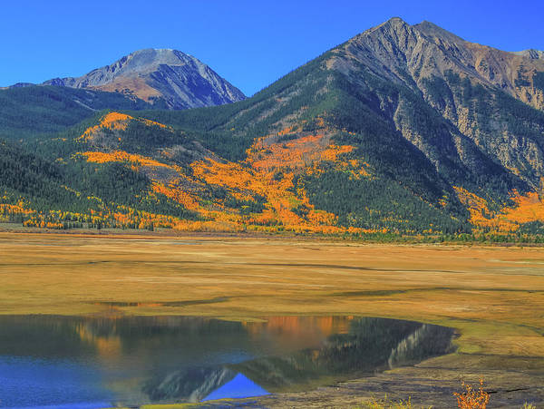 Photograph - Autumn Reflections In Colorado by Dan Sproul