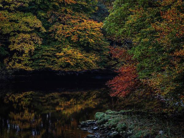 Photograph - Autumn Reflections In Irish River by James Truett