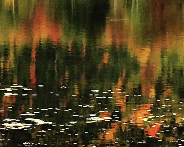 Willett Photograph - Autumn Reflections by John Willetts