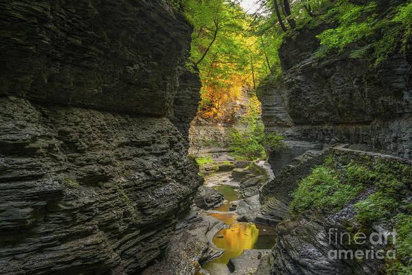Watkins Glen Photograph - Autumn Reflections  by Michael Ver Sprill