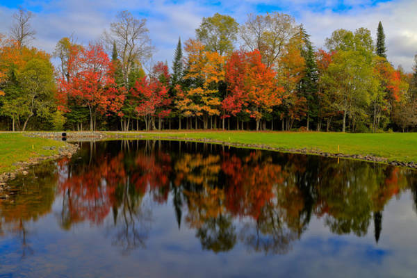 Photograph - Autumn Reflections On The Golf Course by David Patterson
