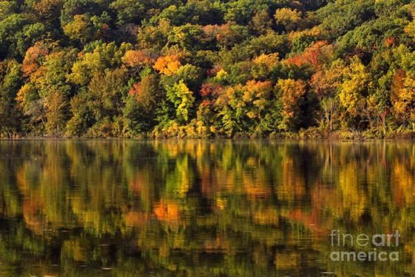 Photograph - Autumn Reflections  by Viviana  Nadowski
