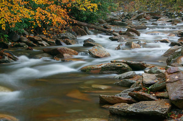 Photograph - Autumn River Cascades IIi by Clarence Holmes