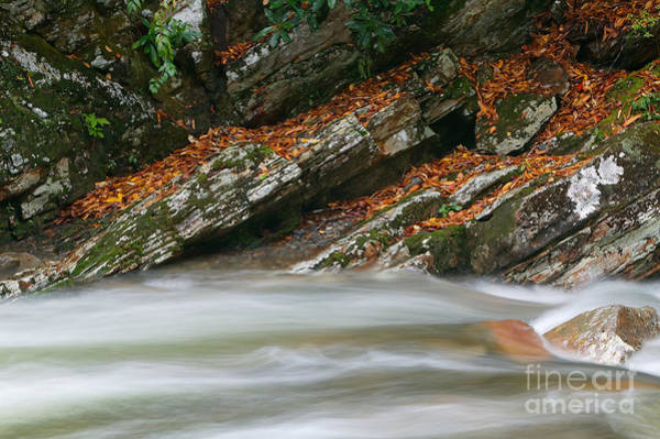 Photograph - Autumn River Cascades V by Clarence Holmes