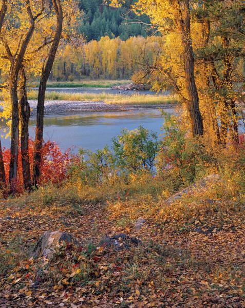 Wall Art - Photograph - Autumn River Light by Leland D Howard