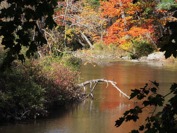 Yarmouth Photograph - Autumn River View by Bill Tomsa
