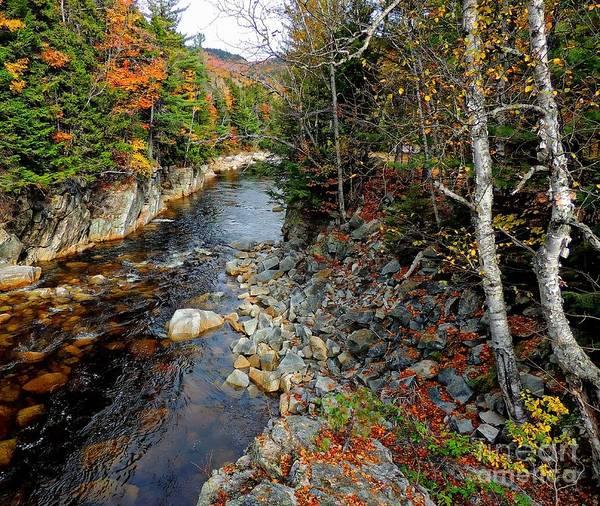 Photograph - Autumn River View by Marcia Lee Jones