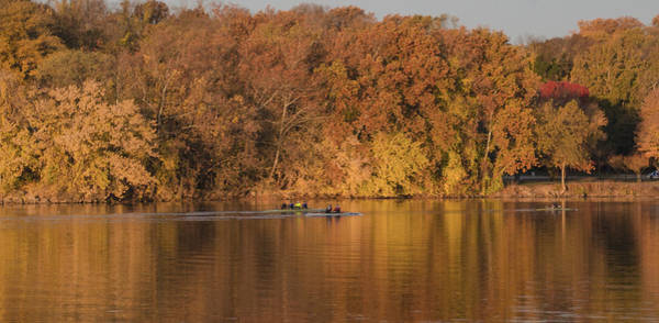 Photograph - Autumn Rowing by Bill Cannon