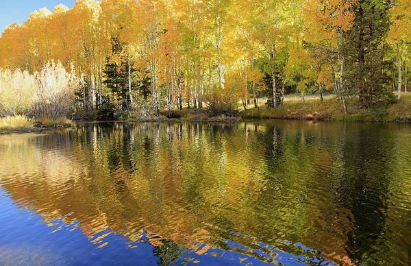 Photograph - Autumn Rush  by Sean Sarsfield